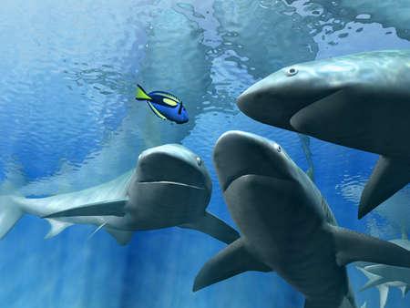 boldness: sharks  Stock Photo