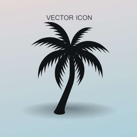 palm tree icon vector illustration Illustration
