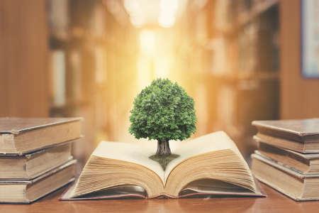 Wereldfilosofie dag concept met boom der kennis planten bij het openen van oud groot boek in bibliotheek vol met leerboek, stapels tekstarchief stapelen en gangpad van boekenplanken vervagen in school studie klaslokaal Stockfoto
