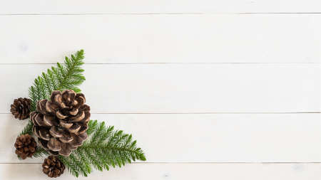 Winter Xmas pine tree wallpaper background artworks.