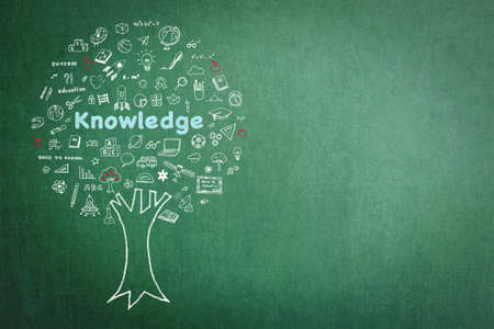 Tree of knowledge education concept on green chalkboard background with doodle 免版税图像