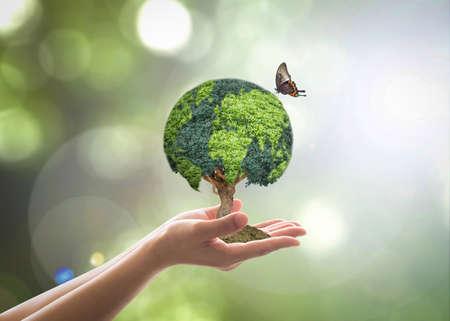 Árbol de globo verde en la mano de un voluntario para el medio ambiente sostenible y la conservación natural en el concepto de RSE
