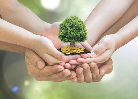 Pianificazione della pensione e concetto di investimento familiare con albero ricco che cresce sulle mani dei genitori - bambini Archivio Fotografico