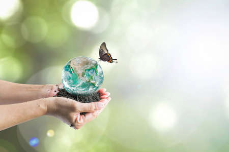 Green planet on people's hand for world environment day, and world soil day concept  (focus on soil): Elements of this image furnished by NASA