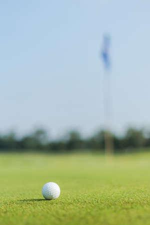 Golfball auf grünem Graskursrasenfeldparknaturhintergrund Standard-Bild