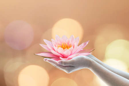 Vesak-dag, Boeddhistische uitgeleende dag, Boeddha's verjaardagsaanbiddingsconcept met vrouwenhanden met waterlelie of lotusbloem