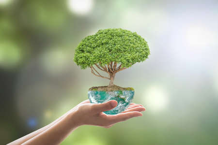 Planting tree in green globe planet on volunteer's hands for world environment day, eco friendly concept.