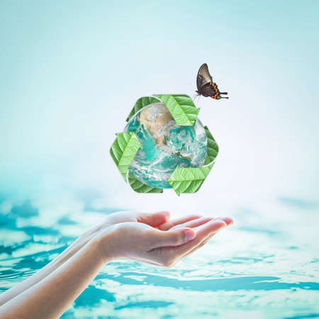 Waste water recycle, eco friendly and saving biological sustainability concept Stock Photo