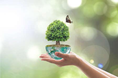 Milieubehoud en natuurlijk behoudsconcept met het schaven van bomen op de groene aarde op de handen van vrijwilligers