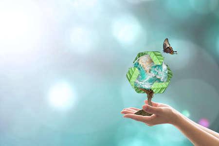 Beheer van afvalrecycling, bewustzijn van energiebesparing, ecologische duurzaamheid en concept voor het planten van bomen Stockfoto