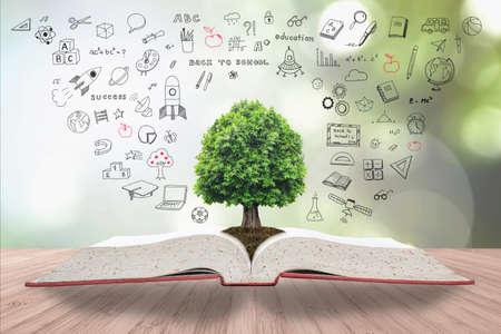 Árbol del conocimiento y la vida que crece en el suelo de un gran libro de texto abierto de archivo con un dibujo creativo a mano alzada en la mesa de madera