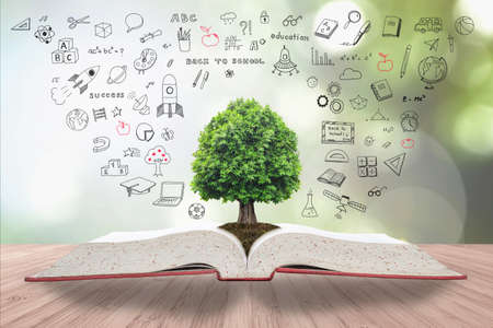 Tree of knowledge and life growing on soil from big archive open textbook with creative freehand doodle drawing on wooden table Standard-Bild