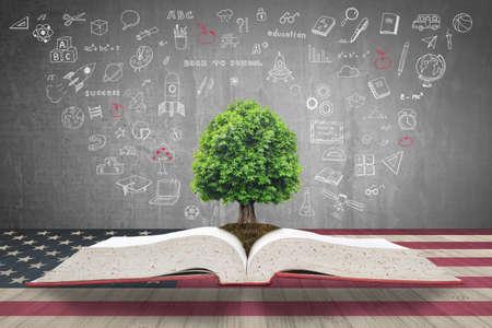Arbre de connaissances s'élevant sur le manuel ouvert avec la table en bois du drapeau doodle onUSA pour l'investissement éducatif et le concept de réussite Banque d'images