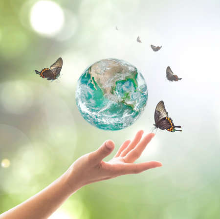World environment day, sustainable ecology and environmental friendly concept with green earth planet on volunteer's woman hands. Stock Photo