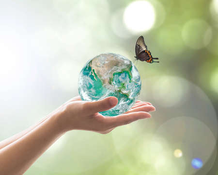 World environment day, sustainable ecology and environmental friendly concept with green earth planet on volunteer's woman hands.