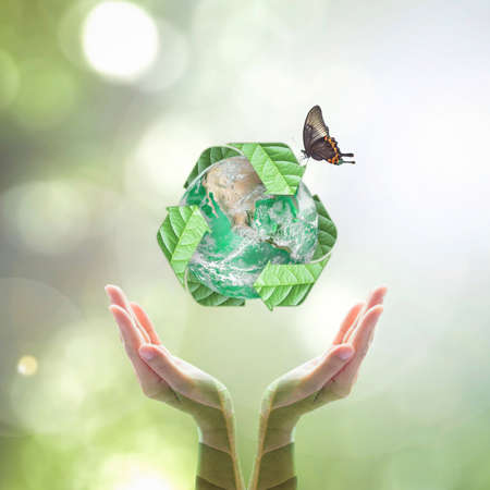 Green planet with recycle sign on hands with tree leaves for world environment day and ecological friendly concept