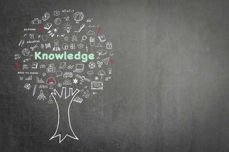 Arbre du concept d'éducation de la connaissance sur fond de tableau noir avec doodle Banque d'images