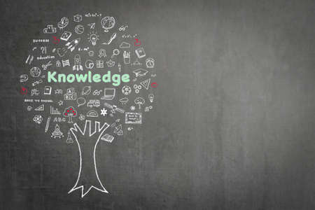 Tree of knowledge education concept on black chalkboard background with doodle