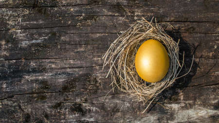 A golden egg opportunity concept of wealth and a chance to be rich Banco de Imagens