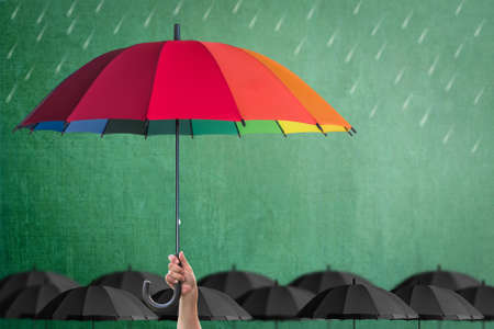Life-health Insurance protection or business financial leadership concept with leaders hand holding rainbow umbrella on green chalkboard