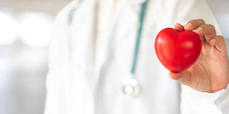 Cardiovascular disease doctor or cardiologist holding red heart in clinic or hospital exam room office for csr professional medical service, cardiology health care and world heart health day concept