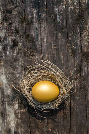 A golden egg opportunity concept of wealth and a chance to be rich 写真素材