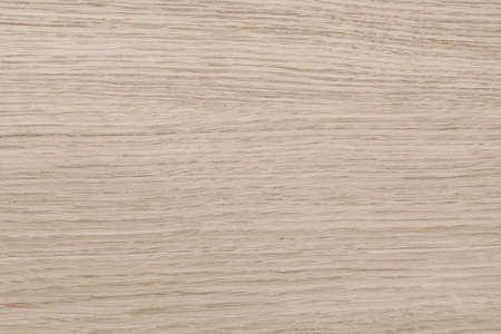 Wood texture background in natural light sepia cream creme beige color 免版税图像