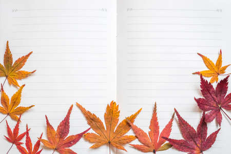 Blank note book paper texture line pattern background for handwriting with colorful autumn leaves frame