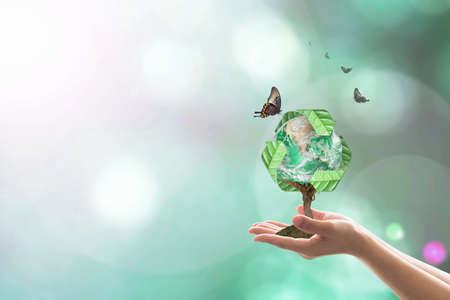 Planting  bio recycle world globe on volunteers hands for sustainable natural environment concept.