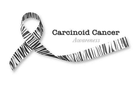 Carcinoid Cancer Awareness ribbon zebra stripe print pattern isolated on white background