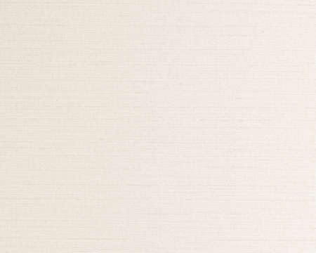 Cotton silk natural blended fabric wallpaper texture background in light pastel pale white beige cream color