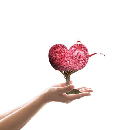 Welt-Aids-Tag mit rotem Bandbewusstsein auf den menschlichen Händen der Frauen, die Liebesherzbaum geben