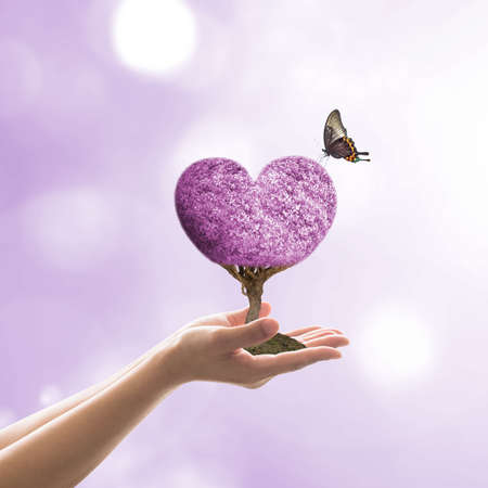 Happy Valentines day celebration February 14th concept with purple heart tree