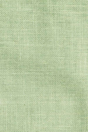 Hessian sackcloth woven texture pattern background in light pale green earth color Zdjęcie Seryjne