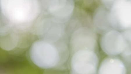 Green bokeh blur background of blurry greenery view looking upward to sky with sun light flare glowing in cyan green for spring and summer season color