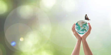 World environment day with tree planting and green planet earth on volunteering protection hands for go green and saving ecology, eco-friendly concept. Element of the image furnished by NASA