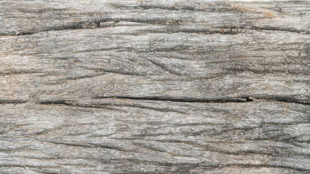 Wood background with rough old aged rustic wooden log grainy texture surface and weathered crack for grungy dark timber wallpaper