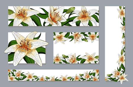 Banners set elegant lily tiger type realistic flowers vector Ilustração