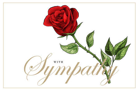 Condolences sympathy card floral red roses bouquet and lettering Vettoriali