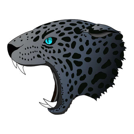 Vector angry panther, cougar portrait. Jaguar predator head colorful isolated
