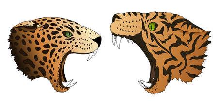 Le léopard et le tigre affamés de vecteur veulent manger des têtes de prédateur colorées isolées