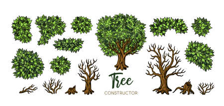 Landscape trees constructor set. Trees, leaves and branches elements for design 向量圖像