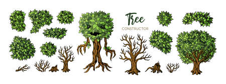 Fantasy trees constructor set. Trees, leaves and branches elements for design 向量圖像