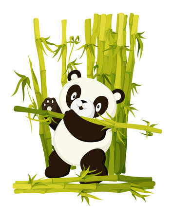 Cute panda bear gathering bamboo stems. Asian rainforest productive bear flat vector isolated illustration. Jungle wildlife, zoo animal. Wild mammal working cartoon character. Baby adorable book page