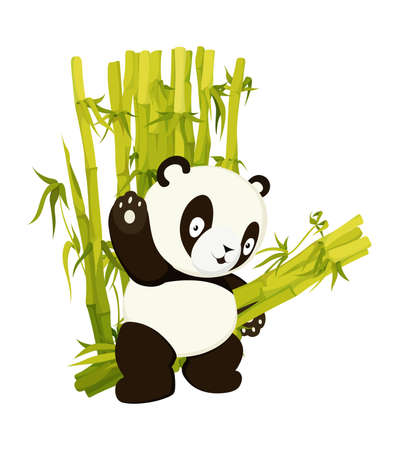 Cute panda bear carry bamboo stems. Asian rainforest productive bear flat vector isolated illustration. Jungle wildlife, zoo animal. Wild mammal working cartoon character. Baby adorable book page Çizim