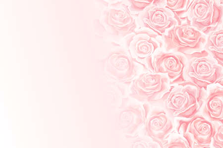 Flower soft background with cream rose flower bud Vettoriali