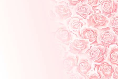 Flower soft background with cream rose flower bud Vector Illustration