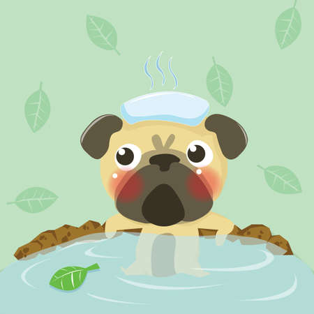 pug relax in warm water,dog lovely Vector