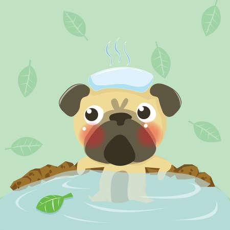 relent: pug rilassarsi in acqua calda, cane bello