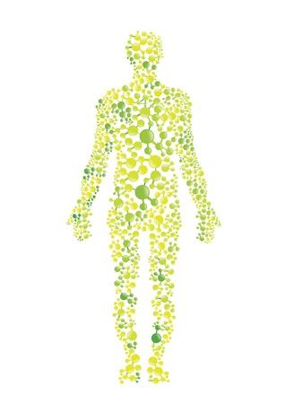 Green environmental concept of the human body